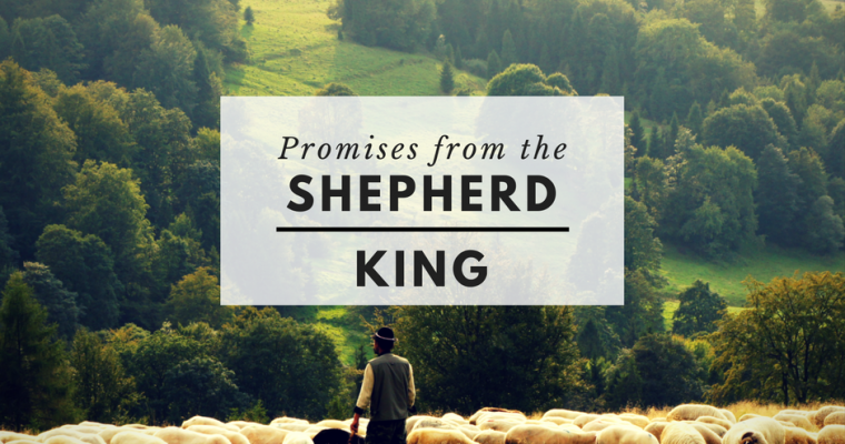 Promises from the Shepherd King